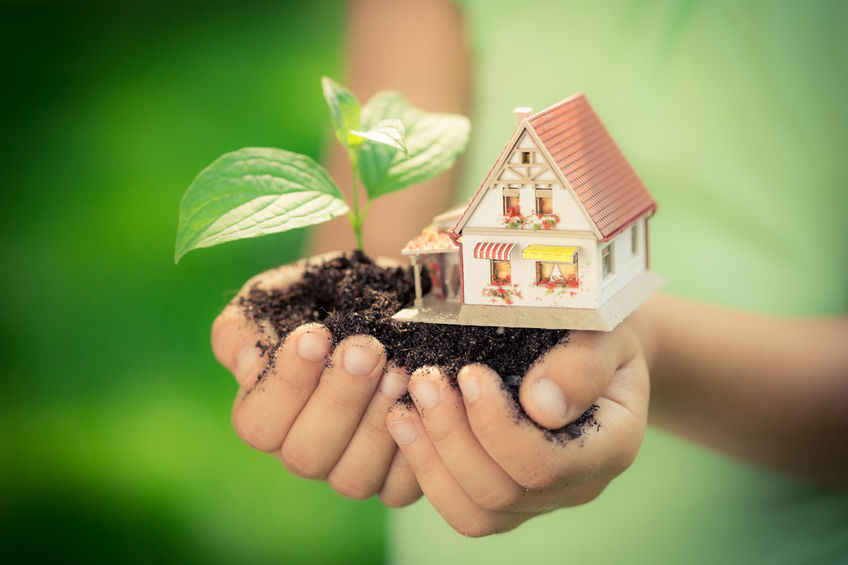 37128537 - child holding house and tree in hands against spring green background. real estate concept